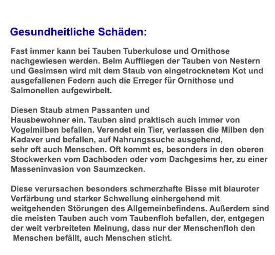 Taubenabwehr, Kammerjäger in Bad Urach